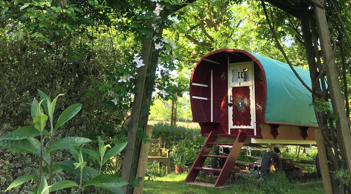 Glamping Self Catering Accommodation in Hampshire