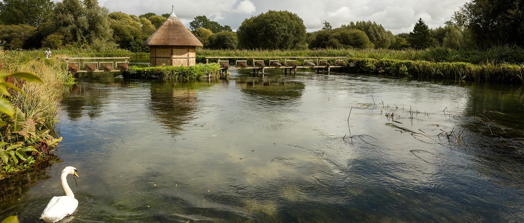 River Test, Longstock
