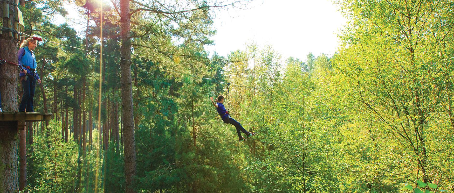 Go Ape Tree Top Adventure