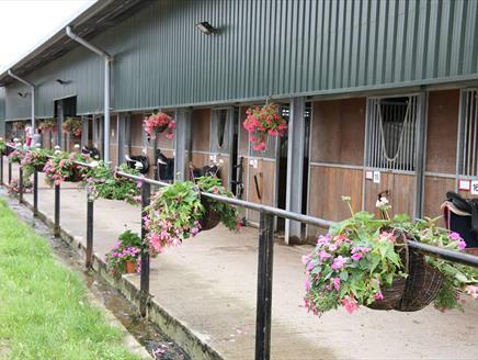 Quob Stables Equestrian Centre