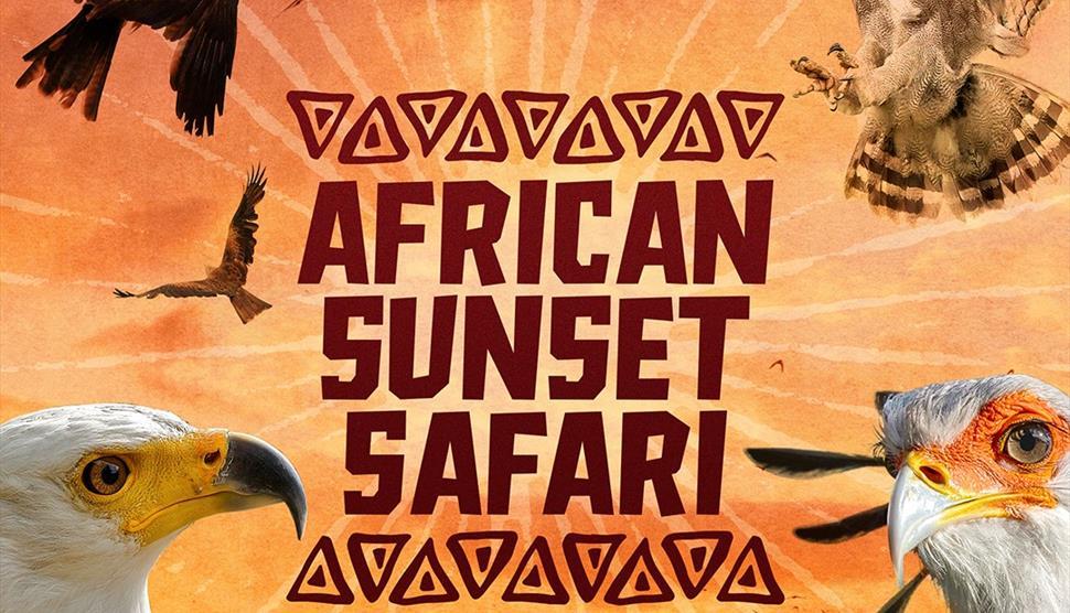African Sunset Safari at The Hawk Conservancy Trust