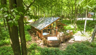 Blackwood Forest Cabin near Winchester, Hampshire