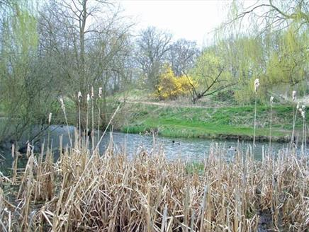 Brickfields Country Park