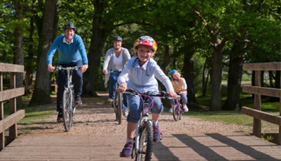 Brockenhurst to Rhinefield Arboretum Cycle Route