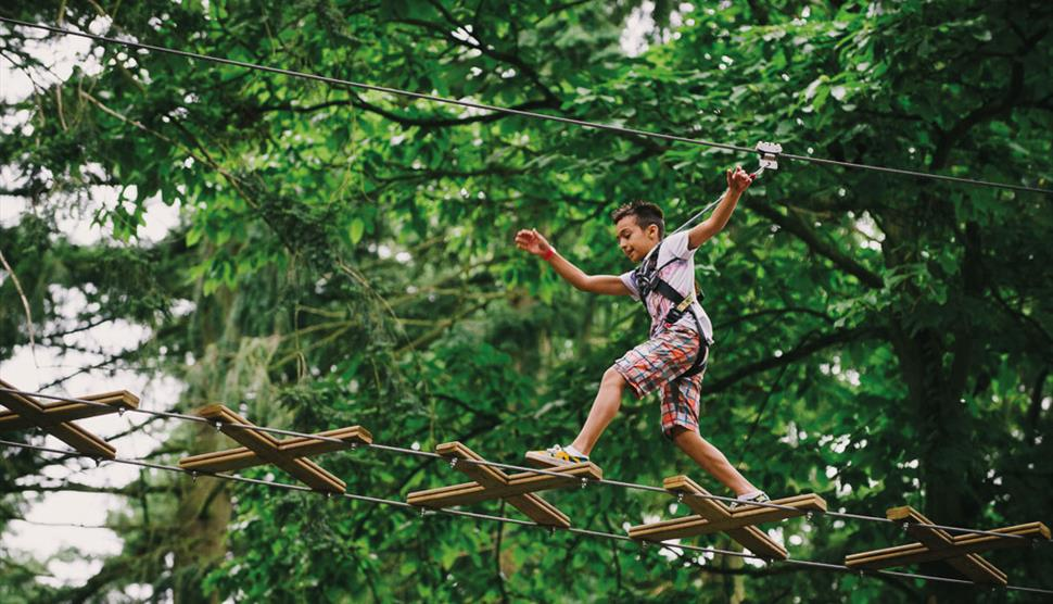 Go Ape at Itchen Valley