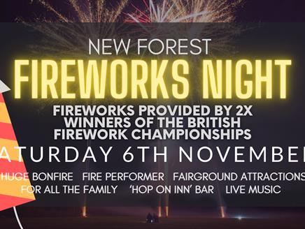 New Forest Fireworks Night