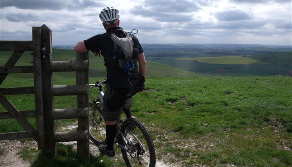 North Wessex Downs 50 mile Circular