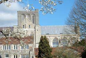 Curious About Winchester: Quirky Heritage Walks for the Curious!
