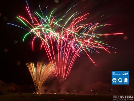 Fleet Lions Fireworks Fiesta