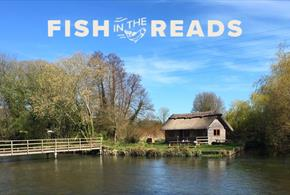 Orvis 'Fish in the Reads' Festival on the Riverbank