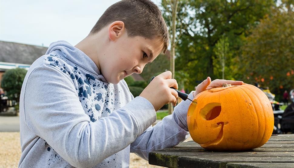 Pumpkin Carving at Exbury Gardens & Steam Railway