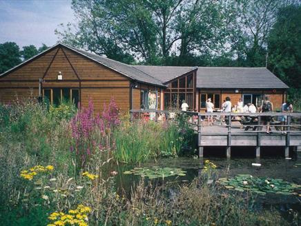 Hawthorns Wildlife Centre