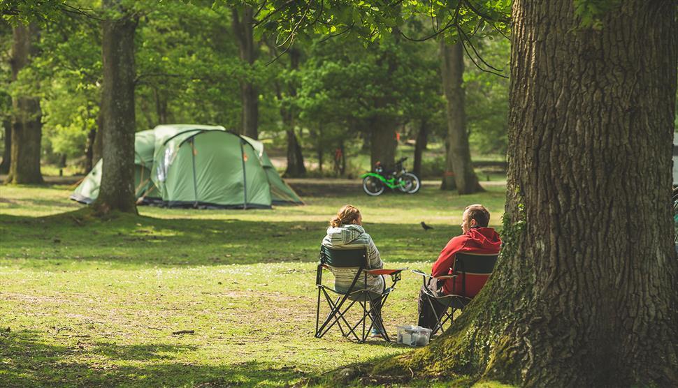 Hollands Wood Campsite, New Forest: Visit-Hampshire.co.uk