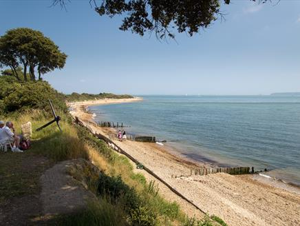 Bird Watching for Beginners at Lepe Country Park