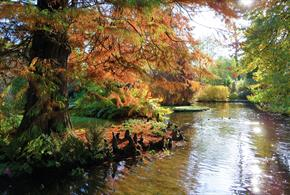 Longstock Park Water Garden Open Days