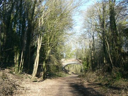 Cycle the Meon Valley Trail