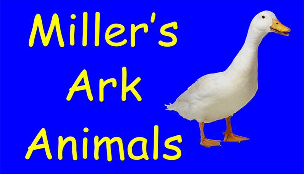 Miller's Ark Animals