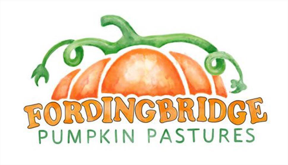 Fordingbridge Pumpkin Pastures Pumpkin Picking