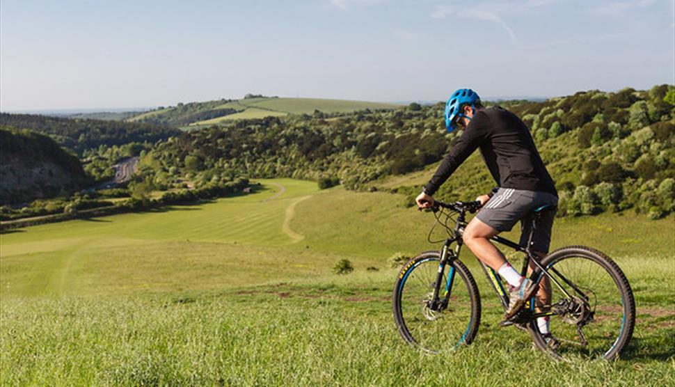 Mountain Biking at Queen Elizabeth Country Park