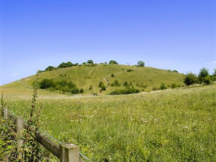 St Catherine's Hill Nature Reserve near Winchester