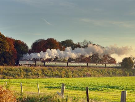 Autumn on the Watercress Line
