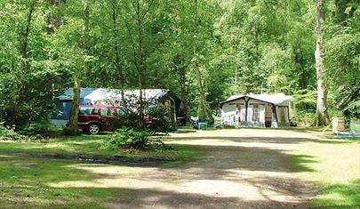 Wellington Country Park - Caravan & Campsite