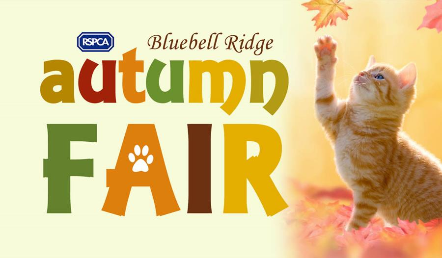 Bluebell Ridge Autumn Fair