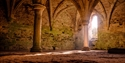 Pillars and vaulted ceiling at Battle Abbey