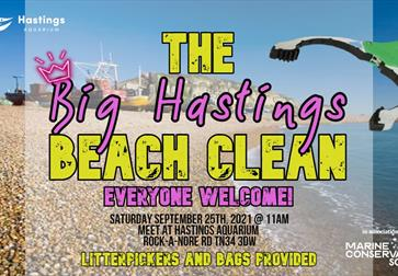 a poster for Hastings beach clean. Background photograph of the stade fishing beach. Pink and Yellow writing reads the big hastings beach clean, every