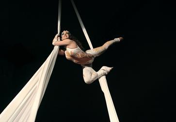 Circus Berlin Aerial artist