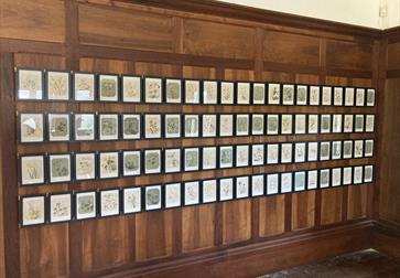 small framed pictures hanging on a wooden wall