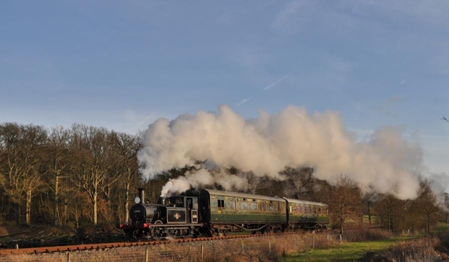 a photograph of steam train with clouds of steam as it passes the countryside.