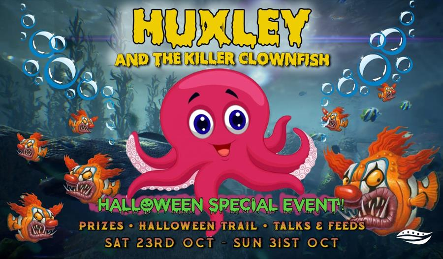 a poster of a pink cartoon octopus and a fish with a scary clown face. Says Huxley the killer clownfish.