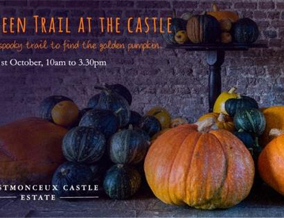 a poster showing a pile of gourds and pumpkins. Text at top says Halloween trail at the castle.