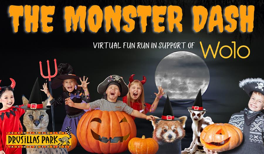 a poster for Drusillas Park's monster dash. Top reads Monster Dash in orange writing. Bottom edge shows collage of children dressed in halloween costu
