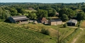 Aerial view of Oxney Organic Vineyard in Beckley, near Rye, East Sussex. © Sam Moore