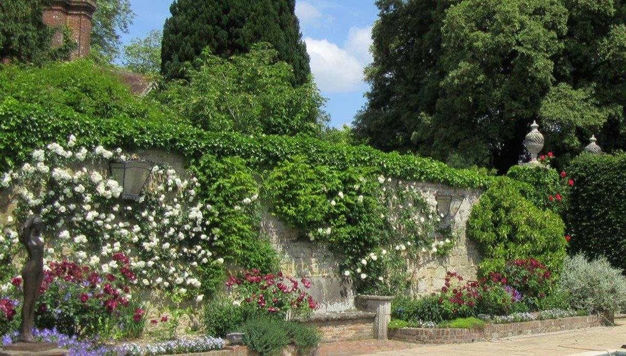 Roses at Pashley Manor Gardens East sussex