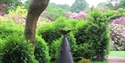 PASHLEY MANOR GARDENS rhododendrons and Philip Jackson sculpture in East Sussex