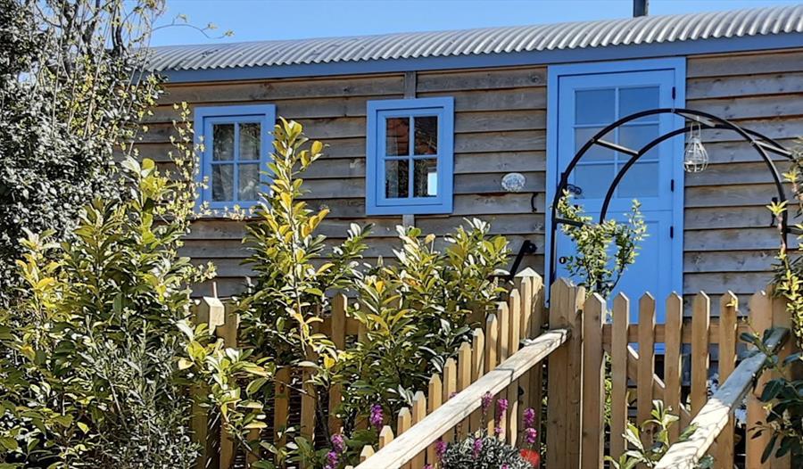 Forget me not cottage - Shepherd's hut - Robertsbridge