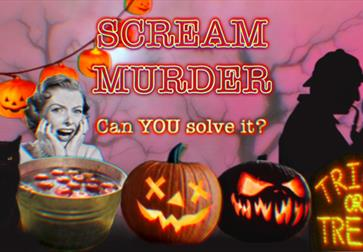 A poster for halloween event. Pink background with images at bottom including a woman screaming, a black cat, pumpkins, and a silhouette of a detectiv