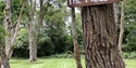 Seven Acre Glamping, Woods, Accommodation, Cabins Battle, Seven Acre Woods, Camping