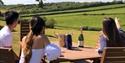 Vineyard, Charles Palmer, East Sussex, 1066 Country Wines