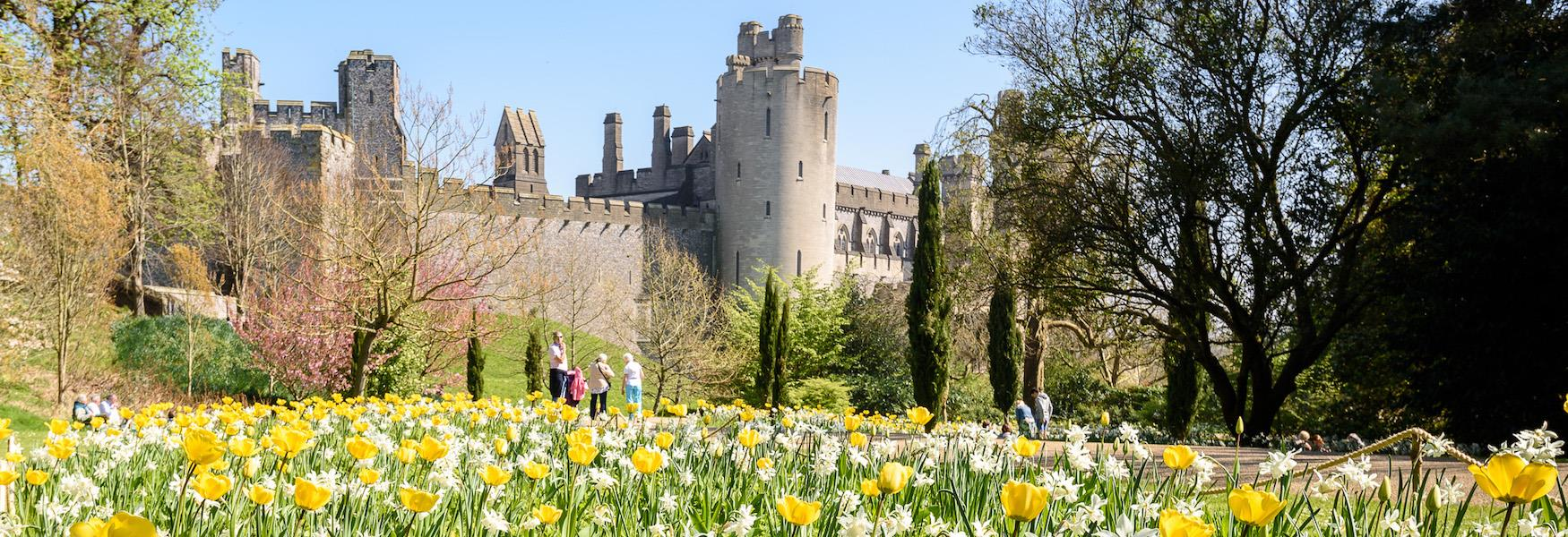 Arundel Castle Annual Tulip Festival