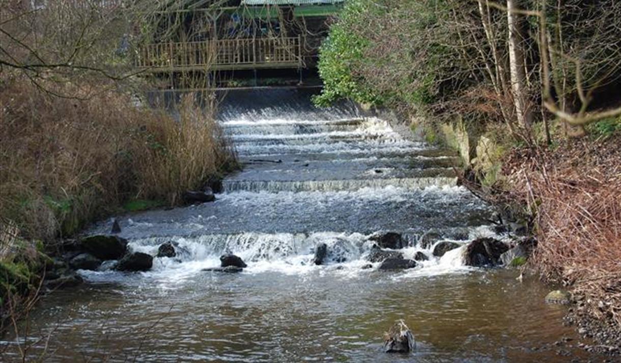 Walks for All - Macclesfield Riverside