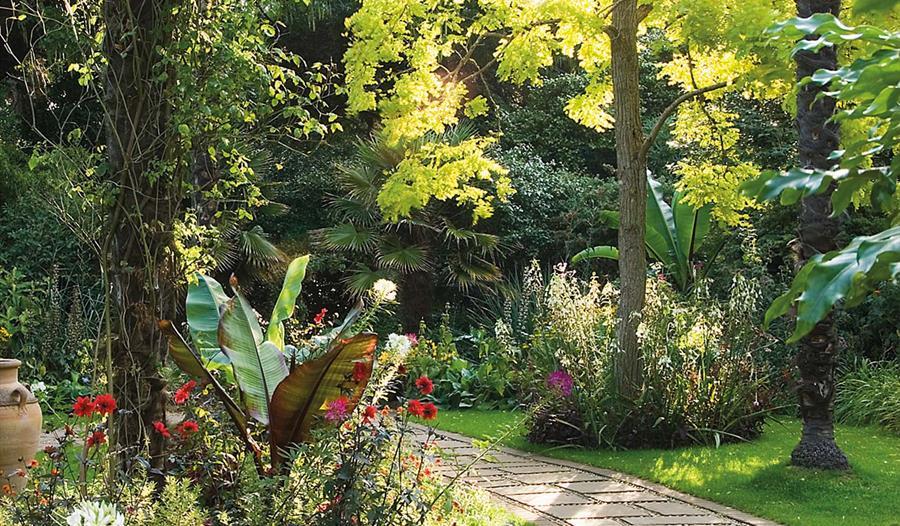 Abbotsbury Sub Tropical Gardens