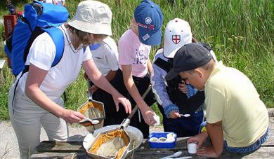 Pond dipping at Tyland Barn