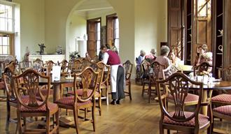 Earl Grey Tea Room