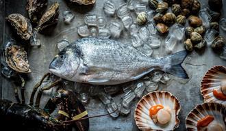 Fish at Twenty Seven Restaurant