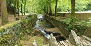 Glen Roy river runs through the picturesque wooded gardens. Admire the mature exotic trees.
