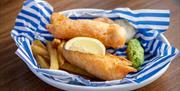 Mains Fish & Fries